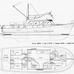 Starlet 42 cruiser